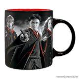 Harry Potter: Harry, Ron, Hermione bögre, 320 ml