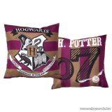Harry Potter díszpárna, 40 x 40 cm