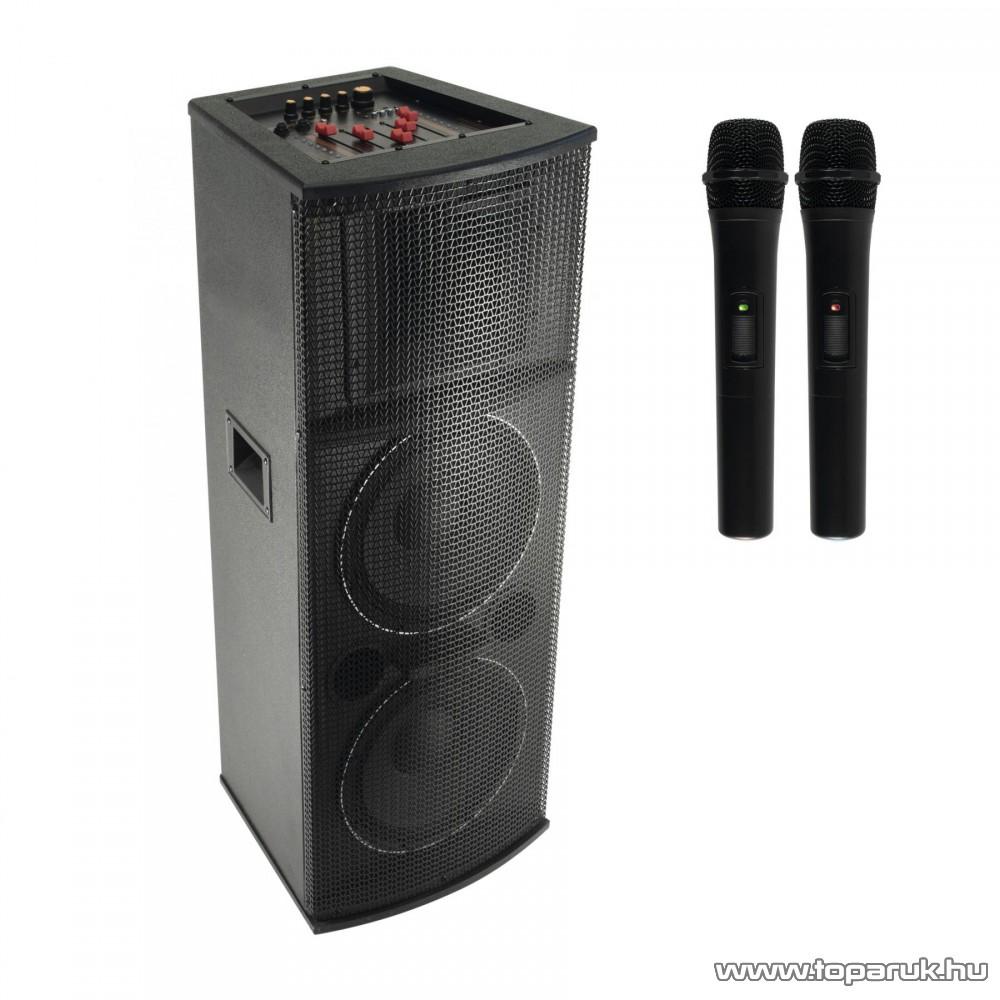 SAL PAX 225BT Multimédia zenekari karaoke aktív hangdoboz, BT kapcsolattal, vezeték nélküli mikrofonnal megszűnt termék: 2020. február